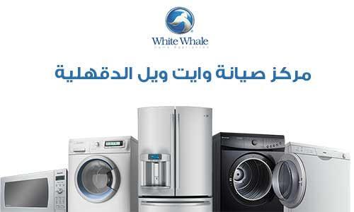 white-whale-maintenance-dakahliya