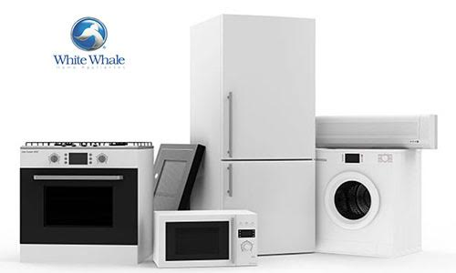 white-wal-maintenance-certified-egypt
